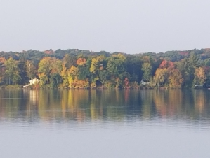Lake surrounded by trees. Leaves are turning.